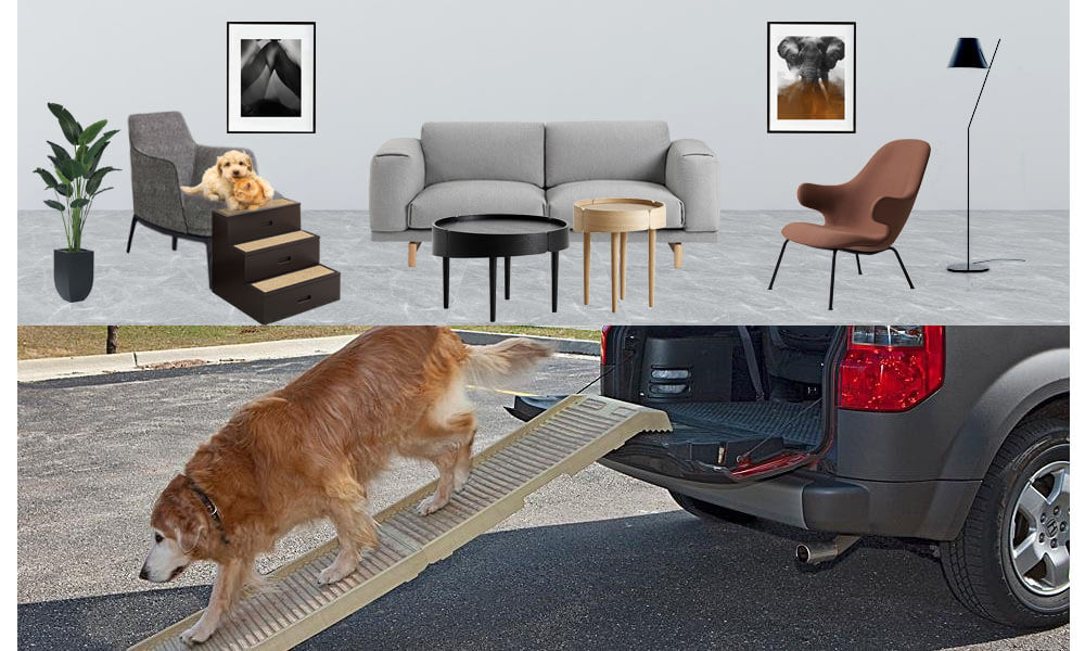 Gentle Rise Dog Couch Ramp Elderly Dogs up to 120 LBS/… Large 53 Long and Supports Small