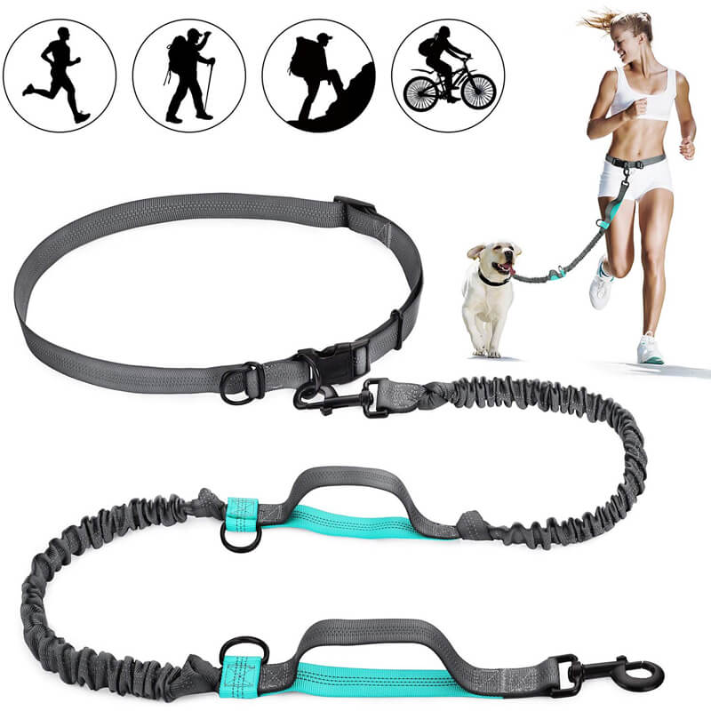 Orange/&Grey 16 ft Dog Walking Leash for Medium Large Dogs up to 110 lbs THUS Retractable Dog Leash Tangle Free